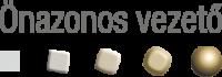 Onazonos vezeto_logo